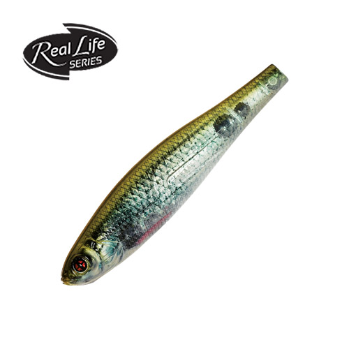 CISCUS MINNOW 65SP - 75SP 6